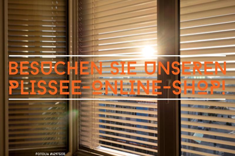 Plissee Rundfenster plisseekauf was muss beim kauf beachten plissee im fenster